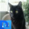 Susan 's avatar