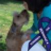Janice Schindler's avatar