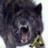 Jackie Vasser's avatar