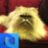 Schnitzerella's avatar