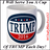 VOTE FOR TRUMP 2016's avatar