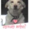 Karma's avatar