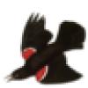 The Public Archive's avatar