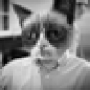 Sean Hackbarth's avatar