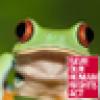 (((Tea Junkie)))🌹's avatar