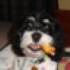 Pamela's avatar