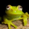 Eric Arentz's avatar