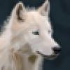 Rex Cox's avatar