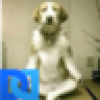 Anna Mills's avatar