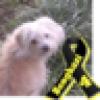 BeckiDuke ™†'s avatar