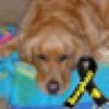 Cynical One's avatar