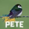 tweeter's avatar