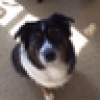 Deb Ramey's avatar
