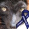J. Susan Billingsley's avatar