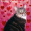 Kitten Underground's avatar