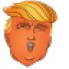 AKA Donald J. Trump's avatar