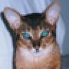 Yves Smith's avatar