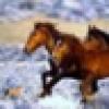 Grrace's avatar