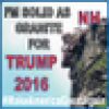 NH_FOR_TRUMP's avatar