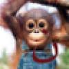 Daddy's avatar