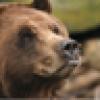 John oso viejo Armistead's avatar