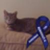 DebL's avatar