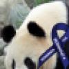 Bob Miller's avatar