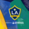 LA Galaxy's avatar