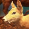 Matthew Power 's avatar
