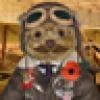 Toddy Furrington's avatar