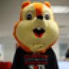 HRC Squirrel's avatar