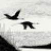 (((lizopp)))'s avatar