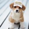 Cass's avatar